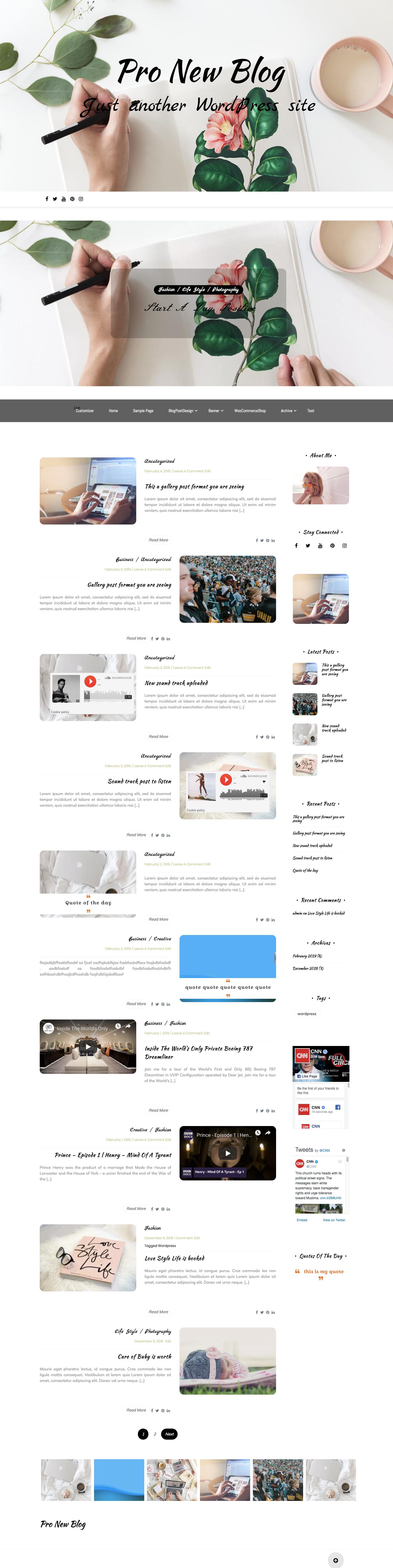 Pro New blog wordpress theme